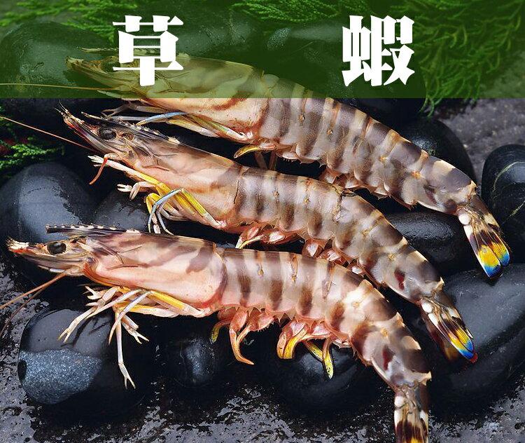 《鮮樂GO》草蝦 400g/盒*5隻 / 精選大規格,每尾蝦體皆肥厚紮實 / 每一口都吃的到鮮甜美味