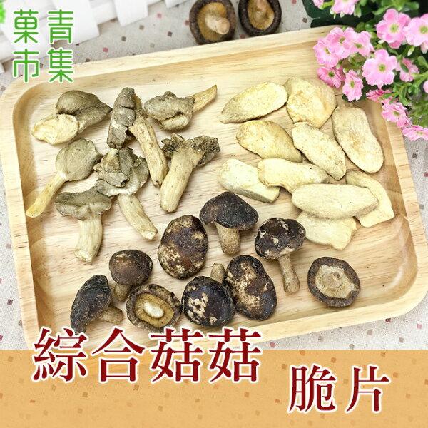 綜合菇菇脆片大包裝【菓青市集】