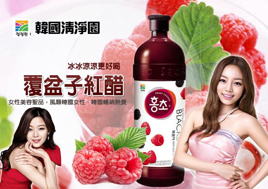 韓國黑莓紅醋/石榴紅醋 全智賢 KARA代言[KO52723457]千御國際 - 限時優惠好康折扣