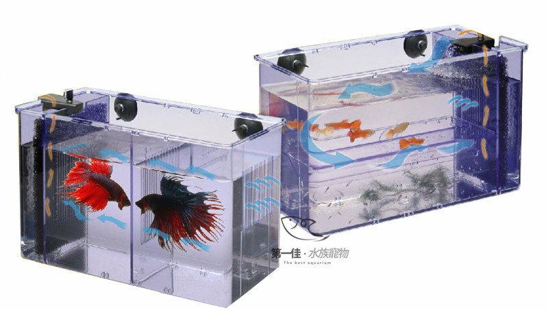 [第一佳 水族寵物] 台灣雅柏UP [缸內-3合1] 動力式鬥魚盒/繁殖盒