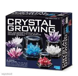 【4M】科學探索系列-神奇水晶體豪華組 Crystal Growing Experimental Kit 00-03915