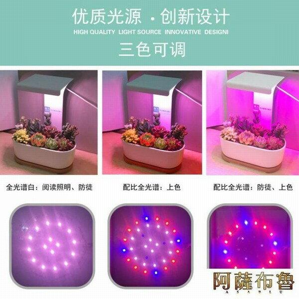 【現貨】植物燈 植力【桌面補光燈】多肉植物led全光譜上色USB家用室內生石花肉錐   【新年禮品】