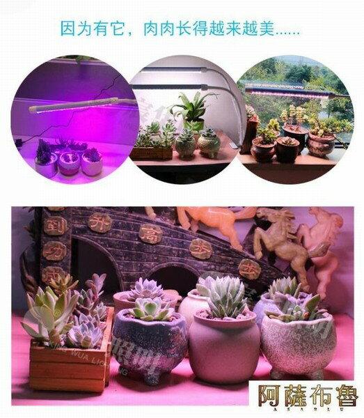 【現貨】植物燈 宸華LED植物補光燈全光譜生長燈花卉綠植多肉盆景桌面夾子補光燈   【新年禮品】