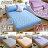 保潔墊 - 五彩燈籠花 床包式(含枕套 5色) [3層抗污 可機洗 加厚鋪棉] 寢國寢城台灣製 0