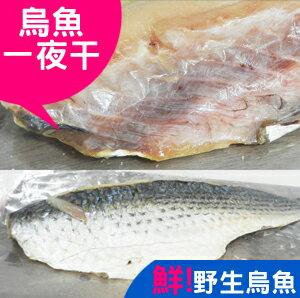 烏魚一夜干/【信全嚴選】/ 冷凍海鮮