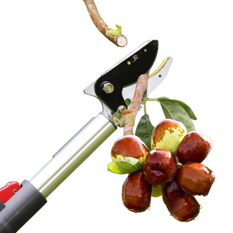 高枝剪 3米高空摘果采果器伸縮摘果器高空采果高枝剪鋸剪修枝剪樹枝剪 WJ【】