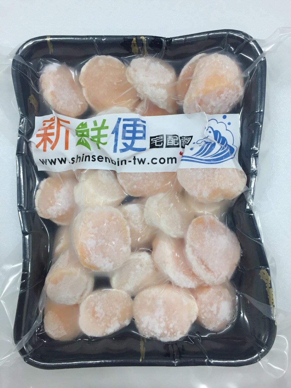 北海道產★特級野生粉紅干貝500g 1