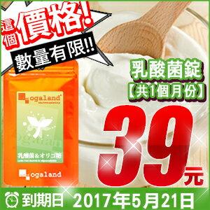 酸奶 牛奶 乳酸菌錠 【約1個月份】 日本進口保健食品 到期日:2017.05.21