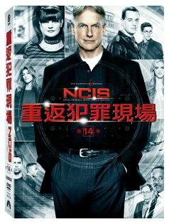 重返犯罪現場第十四季DVD