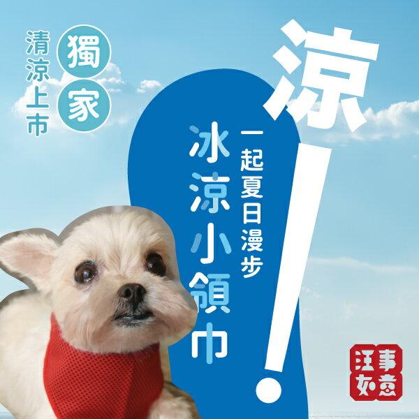 寵物機能冰涼小領巾:外出跑跑的中暑剋星,瞬間降溫,不再喘吁吁!只要一點水就能涼很久!郵寄免運