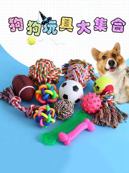 寵物玩具 狗狗玩具耐咬幼犬磨牙寵物球金毛泰迪發聲小狗玩具寵物用品慘叫雞 0