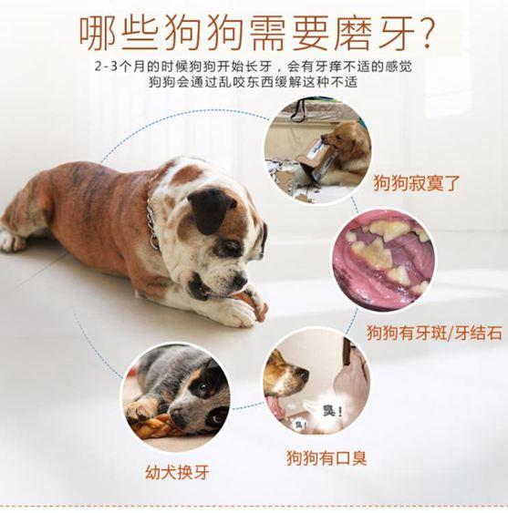 寵物玩具 狗狗玩具耐咬磨牙棒小狗咬膠骨頭幼犬泰迪金毛邊牧寵物大型犬玩具 1