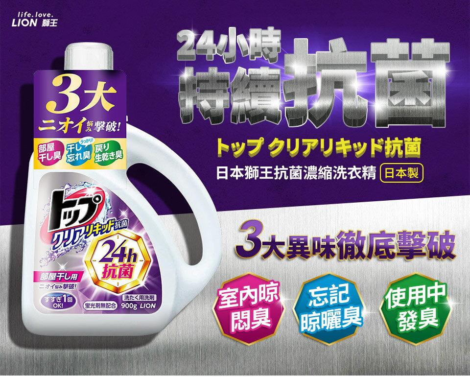 日本獅王 抗菌濃縮洗衣精 900g│9481生活品牌館