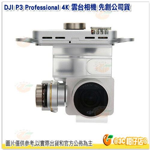 大疆 DJI Phantom 3 Professional 4K 雲台相機 先創公司貨 P3 空拍機