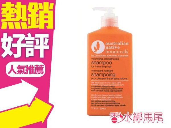 澳洲ANB控油澎鬆精油洗髮精500ml無矽靈◐香水綁馬尾◐
