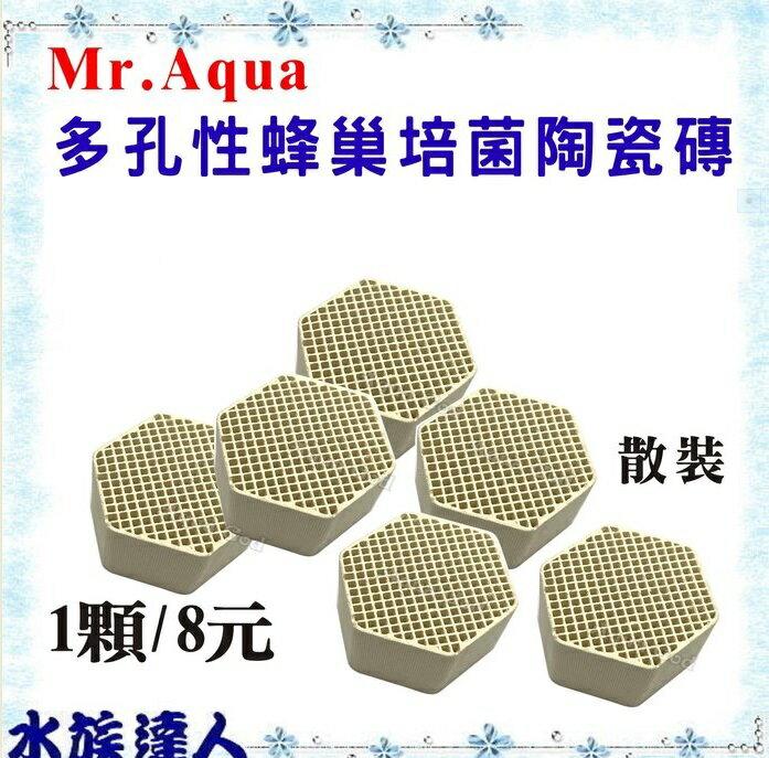 【水族達人】【濾材】水族先生Mr. Aqua《多孔性蜂巢培菌陶瓷磚(蜂巢塊) /1顆》陶瓷環 多孔 培菌 硝化菌 1顆裝