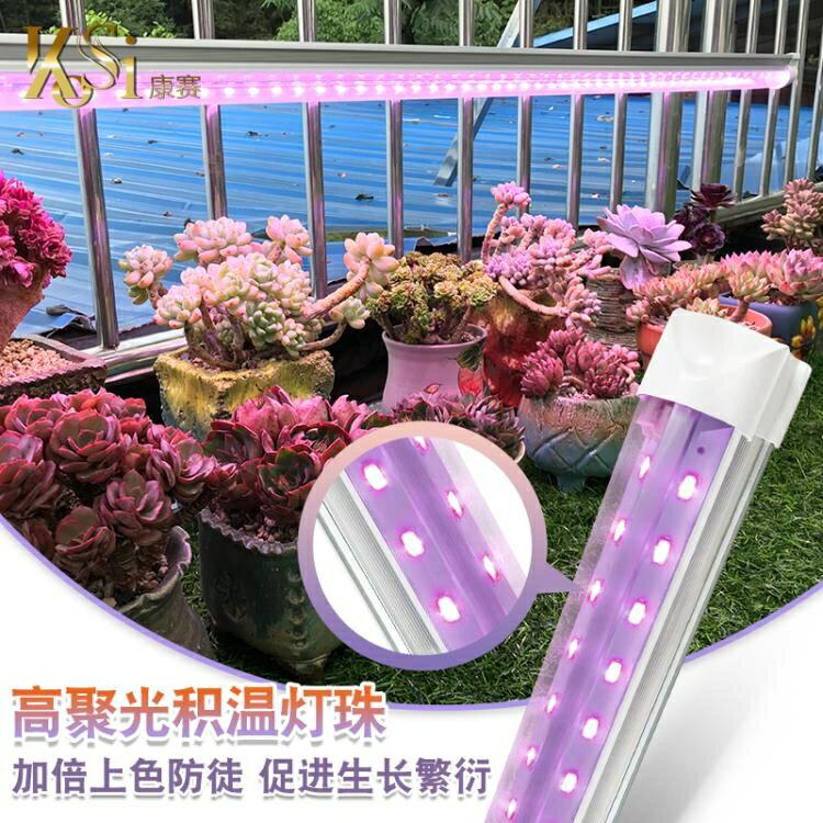 植物補光燈 多肉補光燈 家用上色全光譜LED蘭花卉蔬果育苗仿太陽植物生長燈