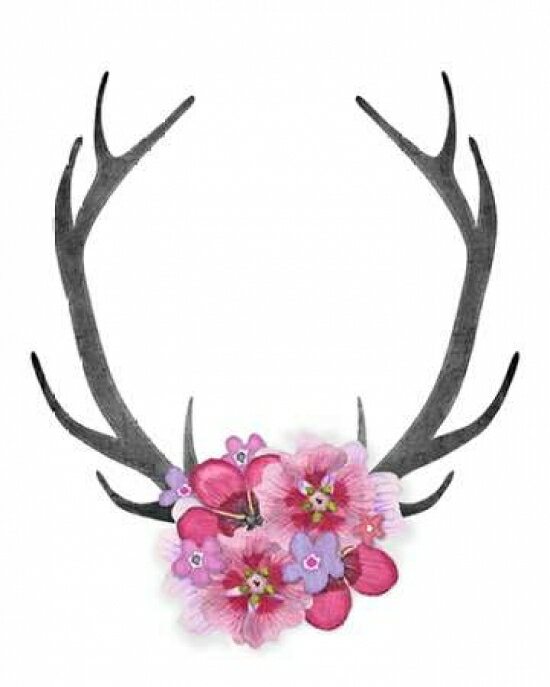Antlers and Pink Flowers Poster Print by Amy Cummings (8 x 10) 0