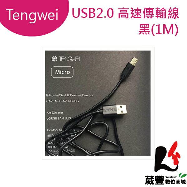 ★滿3,000元10%點數回饋★TengweiMicro極簡高速傳輸線黑色(1M)