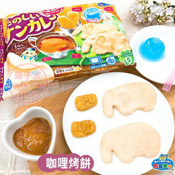 日本Kracie知育菓子知育果子手作咖哩印度烤餅DIY[JP707]