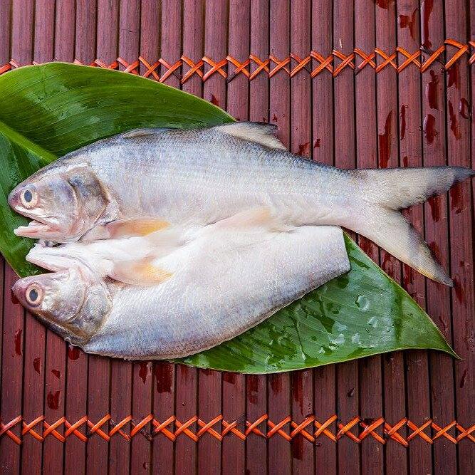 午仔魚一夜干 (薄鹽) 190g~210g