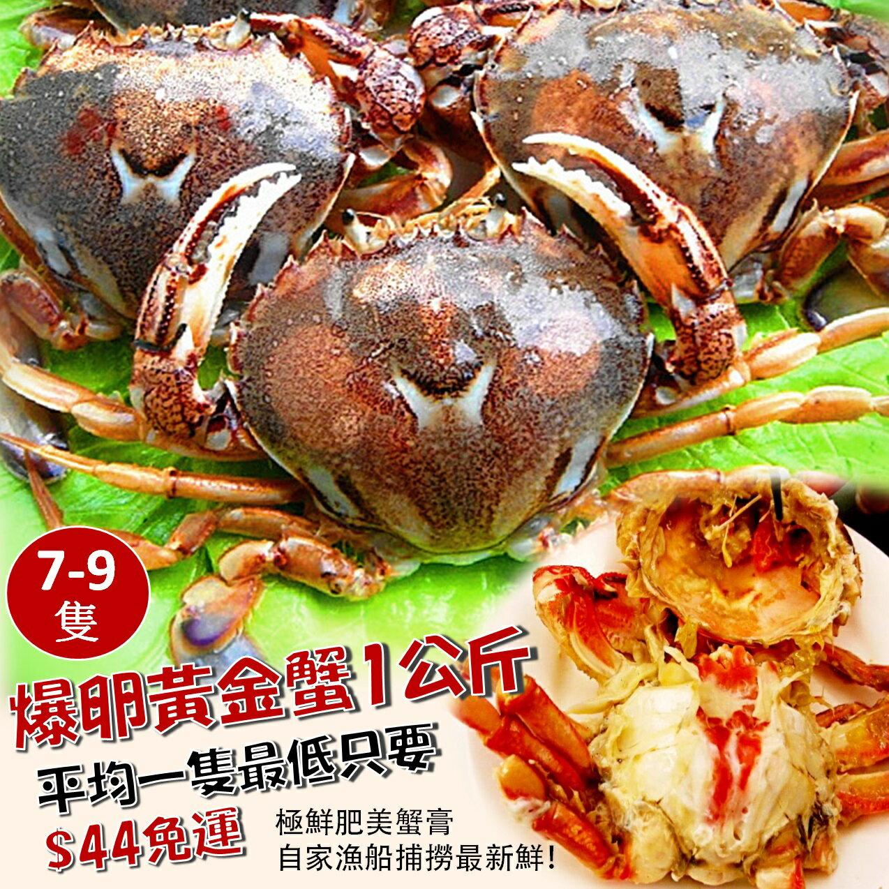 1公斤爆卵黃金蟹~滿滿肥美蟹卵
