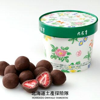 「日本直送美食」[六花亭] 草莓巧克力 (牛奶巧克力/新包裝) ~ 北海道土產探險隊~