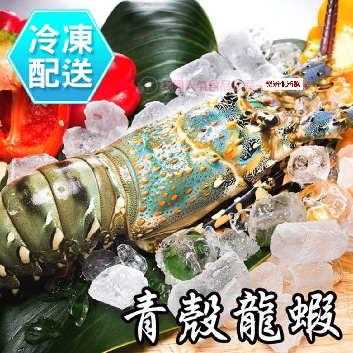 活凍青殼龍蝦 單隻 冷凍配送 樂活生活館