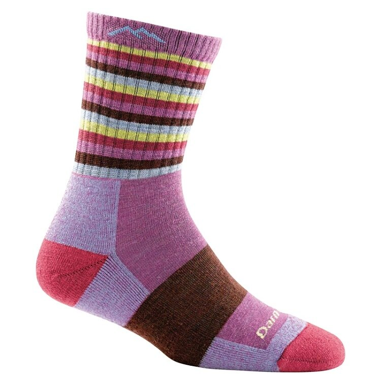 Darn Tough 羊毛襪/美麗諾羊毛襪 女款 STRIPES 1904 紫色條紋 PL/ST