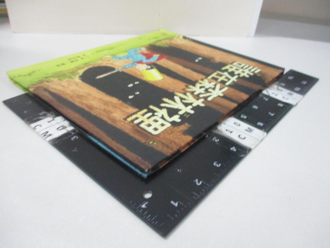【書寶二手書T1/少年童書_DSU】誰在森林裡_保羅.霍普