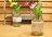 鄉村風Zakka 復古仿舊 蕾絲牛奶瓶玻璃 小花瓶 / 花器 / 置物瓶 《 4款任選 》 ★復古漂亮又實用★ Zakka'fe ★ 0