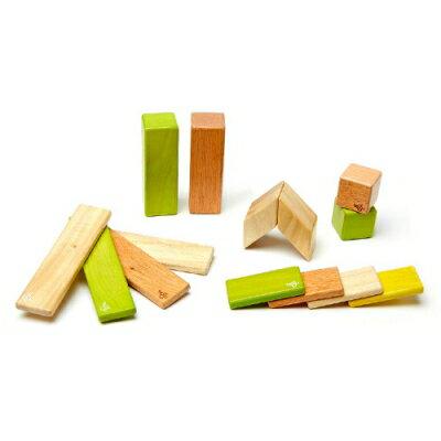 【Tegu】磁性積木- 經典組:叢林系 (14件組)