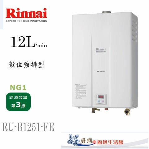 Rinnai-林內牌-原廠-RU-B1251FE-12公升強制排型熱水器
