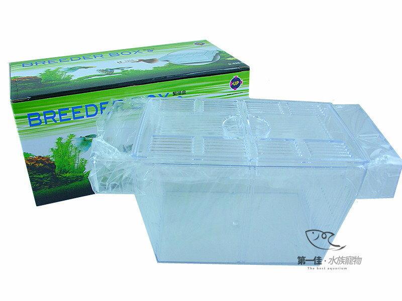 [第一佳 水族寵物] 台灣雅柏UP 繁殖盒、產卵盒、隔離盒、飼育箱 [L]