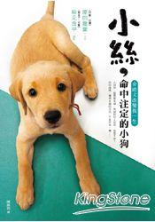 小絲,命中注定的小狗:介助犬改變我一生