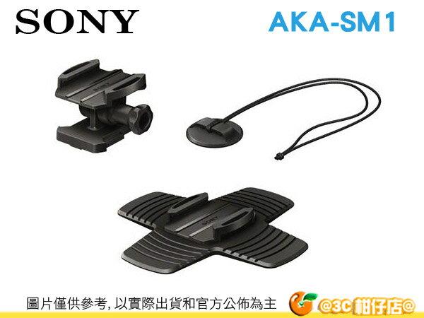 SONY AKA-SM1 衝浪板固定底座 AS15 AS30 專屬配件 極限攝影 運動 台灣索尼公司貨