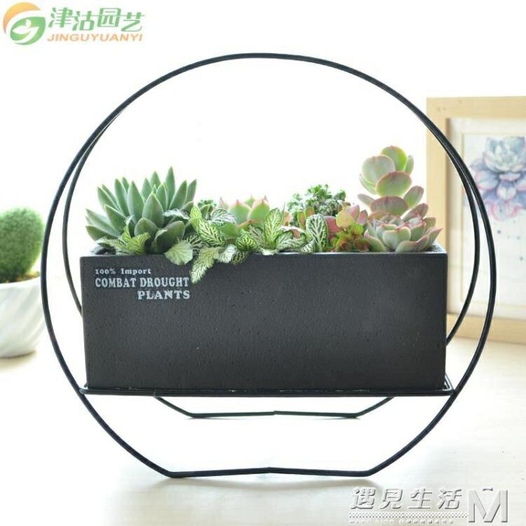津沽園藝多肉植物花盆 簡易長方形多肉盆 黑色水泥盆器帶鐵架