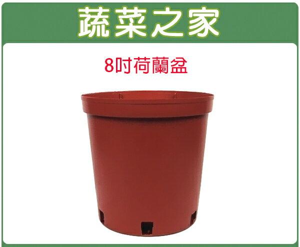 【蔬菜之家005-C47】8吋荷蘭盆、栽培盆10個/組