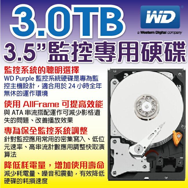 WD 監控系統專用硬碟 3.0TB