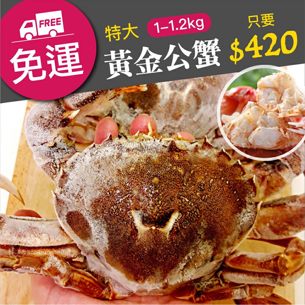 【雞籠好魚】特大公黃金蟹(1000g+-5%/1包,約3-4隻)★基隆秋天的盛產螃蟹季★絲絲的蟹肉,超鮮甜的海滋味★