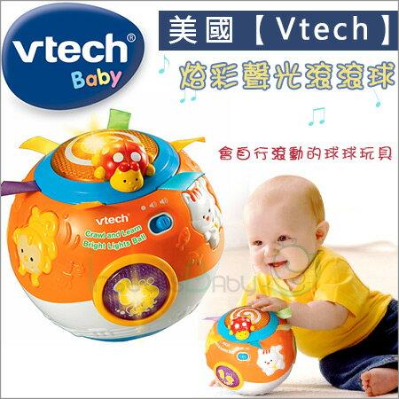 +蟲寶寶+美國【VTech Baby】炫彩聲光滾滾球/會自行滾動的球球玩具/教導寶寶認識動物及聲音《現+預》