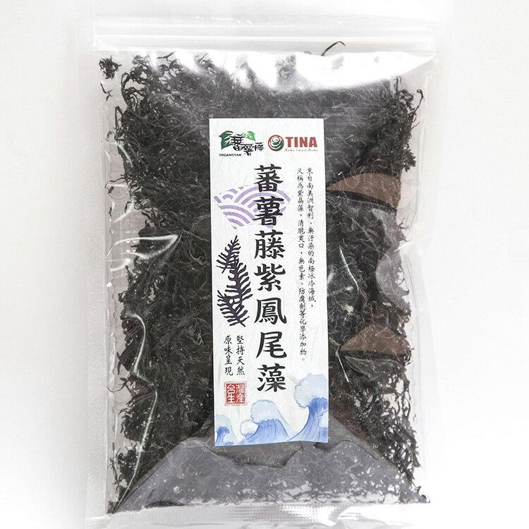 [蕃薯藤]蕃薯藤紫鳳尾藻