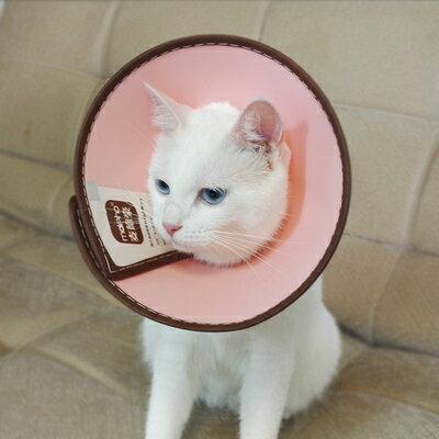 寵物項圈伊莉莎白圈貓頭套頭罩貓咪防舔防咬寵物狗狗伊莉莎白恥辱圈項圈『J734』