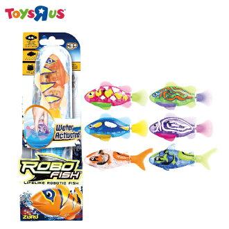 玩具反斗城 小小機械魚1.0