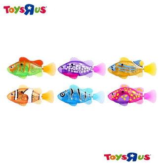 玩具反斗城 LED發光小小機械魚 ( 款式隨機出貨)