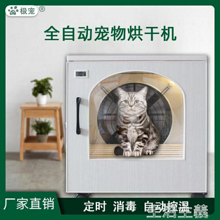 【現貨】寵物烘乾機 全自動寵物烘干箱吹毛機家用烘毛吹水機小型貓泰迪狗靜音吹風洗澡 【新年免運】