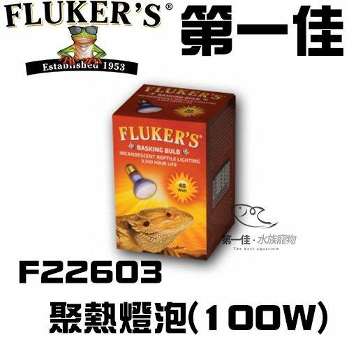 [第一佳水族寵物]美國FLUKER`S聚熱燈泡F22603100W日間爬蟲類聚熱燈泡黃光給寵物溫暖的冬天免運