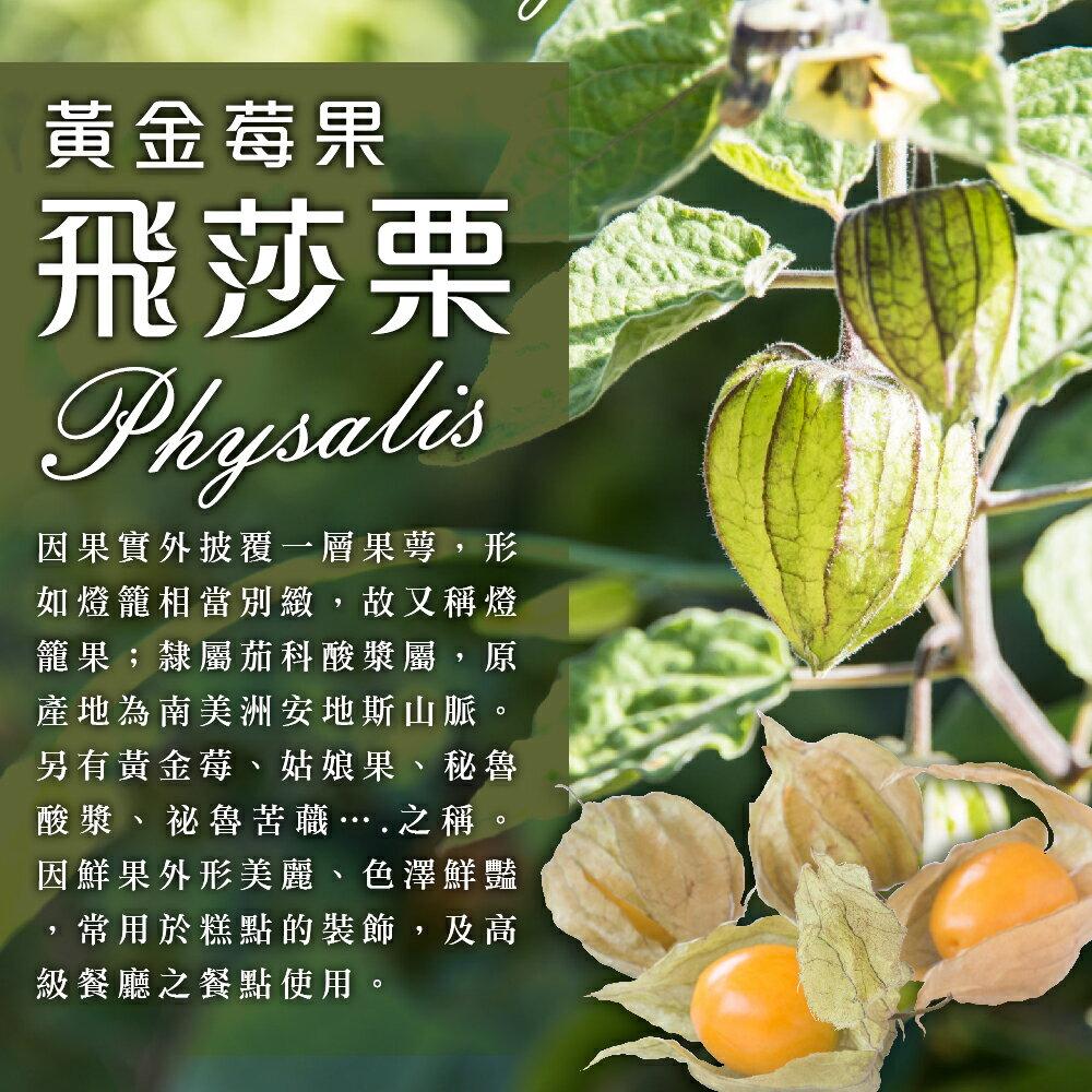黃金莓果乾-飛莎栗150公克【每日優果】 1