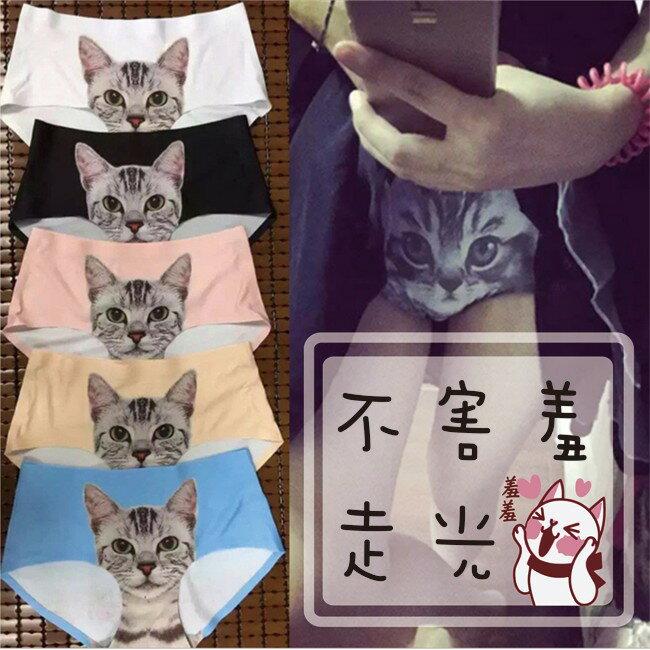 喵星人內褲 pussycat panties 英國防走光 不害羞 超可愛 女內褲 3D轉印設計 貓咪圖案 冰絲內褲D16