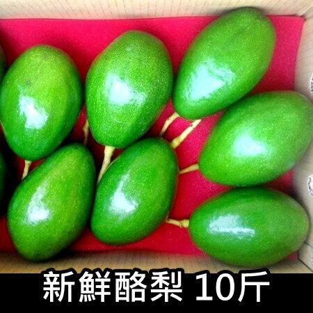 [玉峰]新鮮酪梨/10斤/約13顆